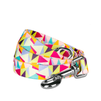 Colorful Spring Pastels Designer Dog Leash